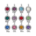 Swarovski TierraCast Stepped Bezel Birthstone Charms, Bright Rhodium